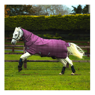 HORSEWARE - RHINO PLUS TURN OUT VL - Couverture paddock 250g berry/grey/white chk/berry