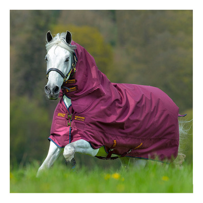 HORSEWARE - AMIGO HERO ACY ALL IN ONE MED TURNOUT - Manta integral de paddock 200g burgundyr